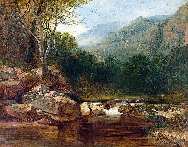 Mountainous Landscape and Rocky Stream