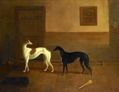 Brace of Greyhounds, the property of Mr. R. Beaumont