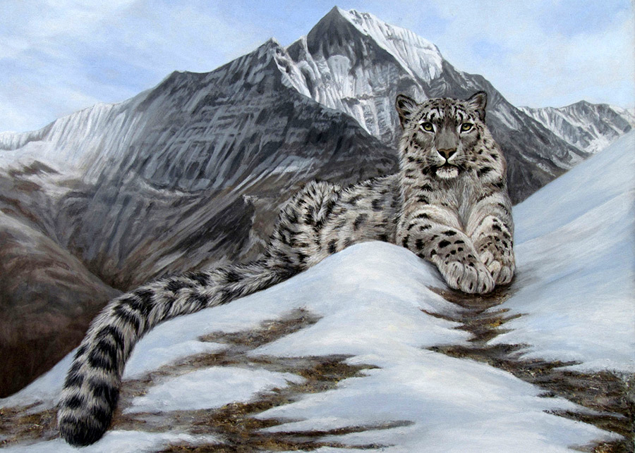 Roof of the World - Snow Leopard