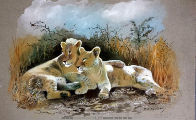 Young Lions in Serengeti National Park