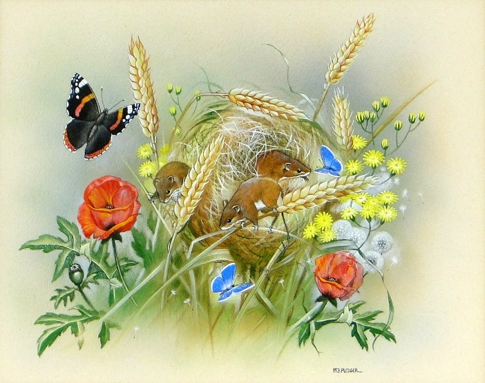 Field Mice and Butterflies