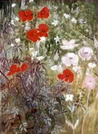 Poppies and Rubrifolia