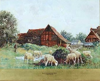 Scene on a Suffolk Farm