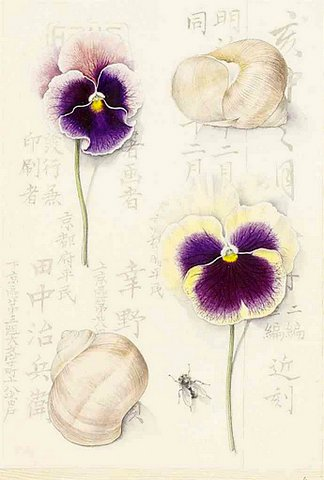 Pansies and Snails