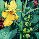 Yellow Cannas 2