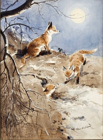 Fox Cubs under the Moon