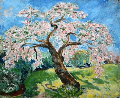 Cherry Blossom in a Rural Landscape