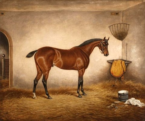 A Bay Horse 'Mariner' in a Stable
