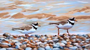 Ringed Plovers On The Water's Edge