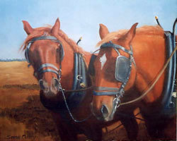 Beever-Suffolk Punches