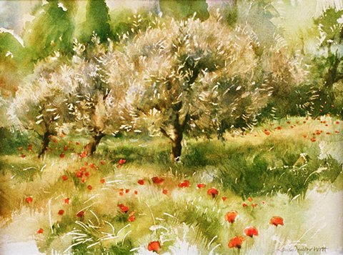 Poppies and Olive Trees